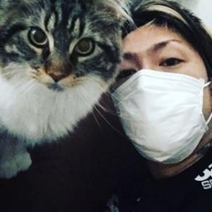 mahと猫